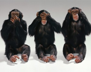 see_no_evil_hear_no_evil_speak_no_evil___three_monkeys_photo-1280x1024